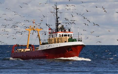 seguros flotas pesqueras